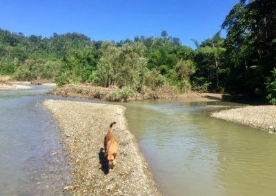 Rio Ayampe 1